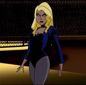 Did you like Smallville's version of Black Canary? Poll ...