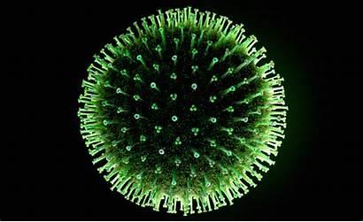Virus Giant Flu Looks Frozen Killer Ancient