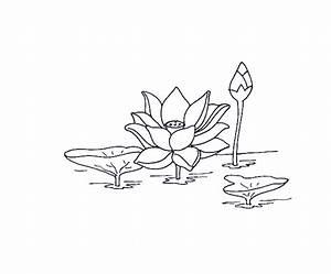 Dessin Fleurs De Lotus : le coin des enfants dessins ~ Dode.kayakingforconservation.com Idées de Décoration
