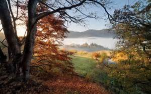 Nature, Landscape, Photography, Morning, Fall, Sunlight, Trees, Fence, Mist, Mountains