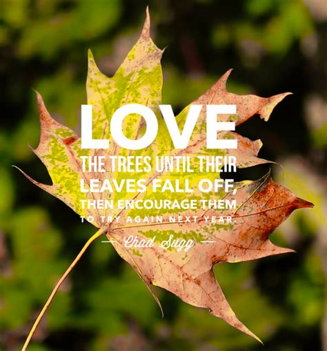 9 Welcome, Autumn Quotes About My Favorite Season