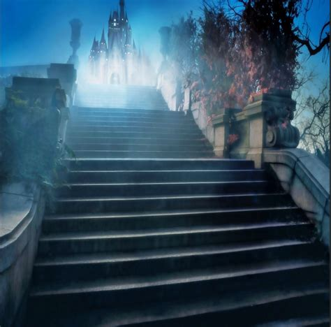 xft cinderella princess castle steps night time custom