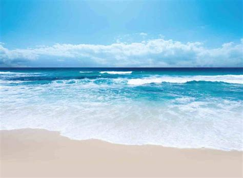 marseilia beach  north coast egypt