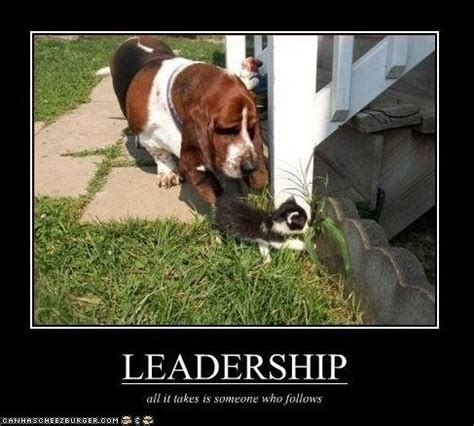Leadership Meme - funny leadership quote quote number 620396 picture quotes