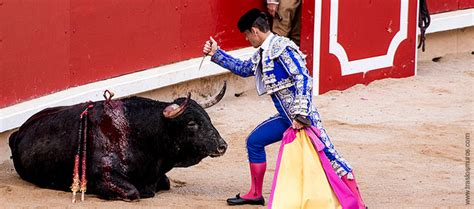 Aktionsaufruf gegen Stierkampf