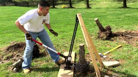 Removing Trees From Backyard by Remove Tree Stump With Hi Lift