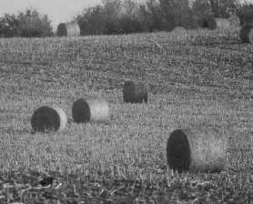 minnesota black white farm country rustic hay field fine