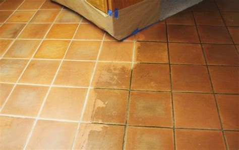 Tile And Grout Cleaning Services Lincoln Nebraska Carpet Cleaning Chillicothe Ohio Beetles Bites On Humans Professional Leeds How Much To Rent A Cleaner From Walmart Polyethylene Terephthalate Gardna Best Rated Shampooer Carpeted Cat Scratching Post