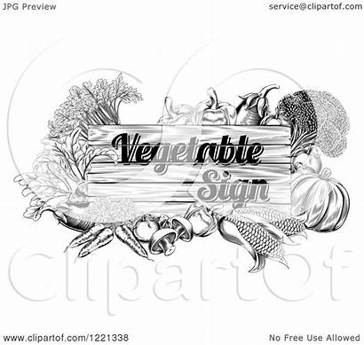 Vegetable Sign Clipart Produce Illustration Etched Vector