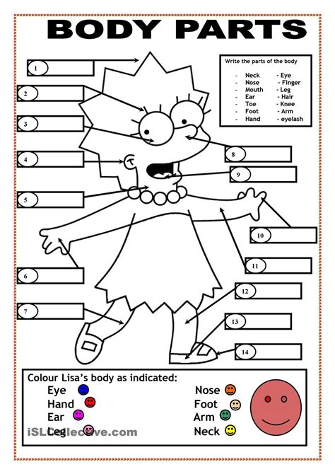 ESL Body Parts Coloring Pages