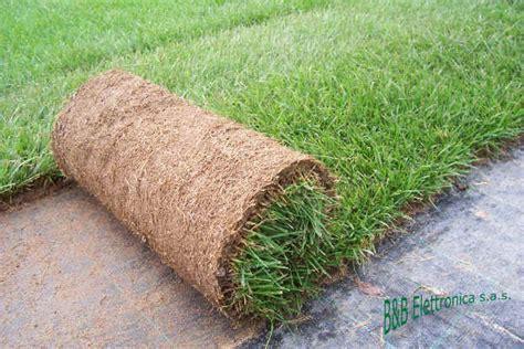 tappeto erboso a rotoli terra per prato tappeti erbosi 50 lt migliore crescita ebay