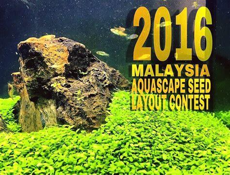 Aquascape Malaysia by The Malaysia Aquascape Seed Layout Contest Atagaleri Net