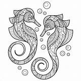 Seahorse Coloring Pages Adult Horse Vector Adults Sea Illustration Premium Drawn Hand Sketch Cartoon Coloringbay Save sketch template