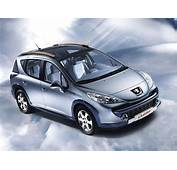 Peugeot 207 SW Outdoor  Picture 440