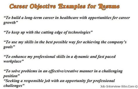 Exle Of Career Objective by Sle Career Objectives Exles For Resumes