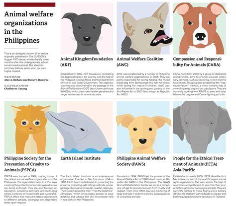 animal welfare organizations   philippines