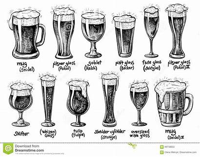 Types Beer Glass Mugs Glassware Vector Drawn