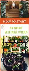 Best 25+ Indoor vegetable gardening ideas on Pinterest indoor vegetable garden ideas