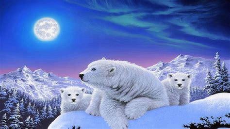 ?dreams Of Polar Bears? Hd Desktop Wallpaper