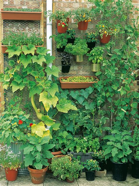 home gardening in spaces