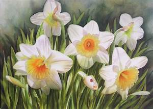 Daffodils | Watercolor Paintings, Commissions, Videos ...