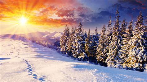 Winter Wallpaper Desktop by Die 73 Besten Winter Wallpapers