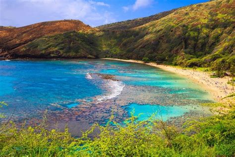 Things To Do In Hawaii Oahu