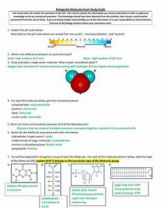 1 1 Biomolecules Study Guide Key