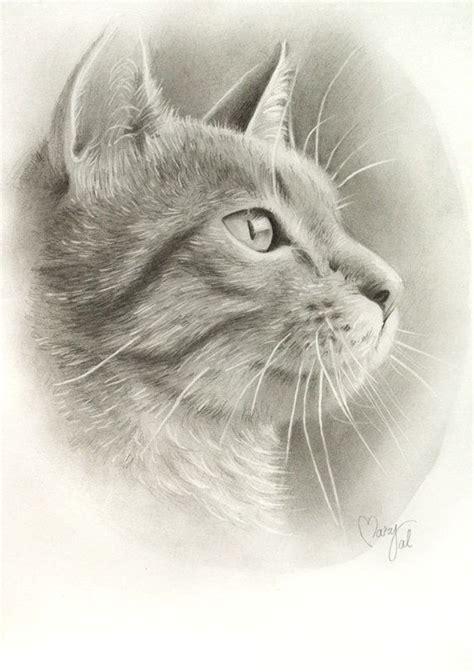 ideas  drawing   cat  pinterest