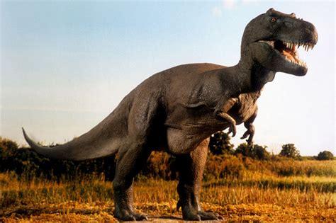 Man Changes His Name To Tyrannosaurus Rex