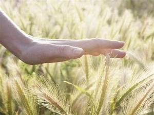 Enhancing the Senses: Improve your sense of touch