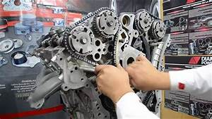 Distribution Of A 3 6l Chevrolet Engine