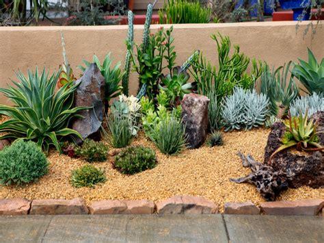 succulents garden ideas best succulent gardens front yard