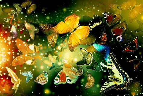 Free Animated Butterfly Wallpaper - free 3d butterfly wallpaper wallpapersafari