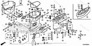 Honda Outboard Parts By Hp  U0026 Serial Range 50hp Oem Parts