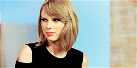 taylor swift cat gif find share on giphy