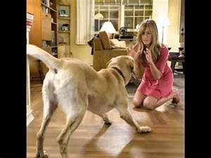Marley and Me Best Scenes - YouTube
