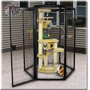 cat condo cage cat cages outdoor cat enclosure and cat enclosure on