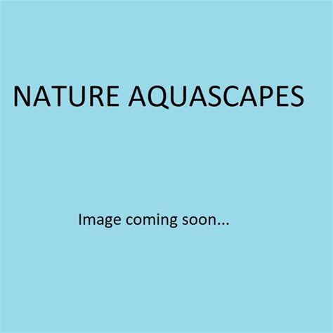 Precision Aquascapes by Precision Atomic Co2 Diffuser 90mm With Built In Check