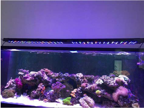 cheap reef tank lighting popular 48 reef light buy cheap 48 reef light lots from