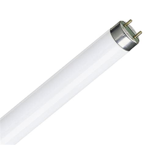 t8 or g13 fluorescent