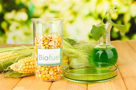 Was Ist Ethanol by Was Ist Bioethanol Nachhaltiger Brennstoff F 252 R Ethanol Kamine