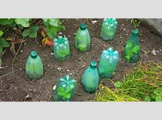 Recycling Plastic Bottles in the garden