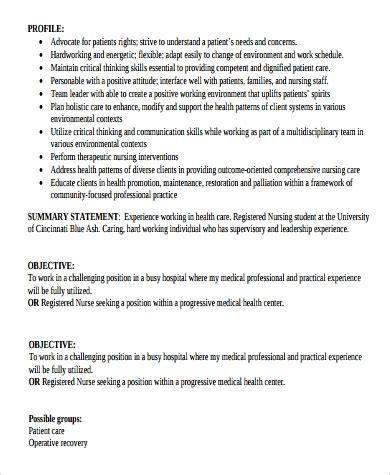 resume summary statement   samples  word