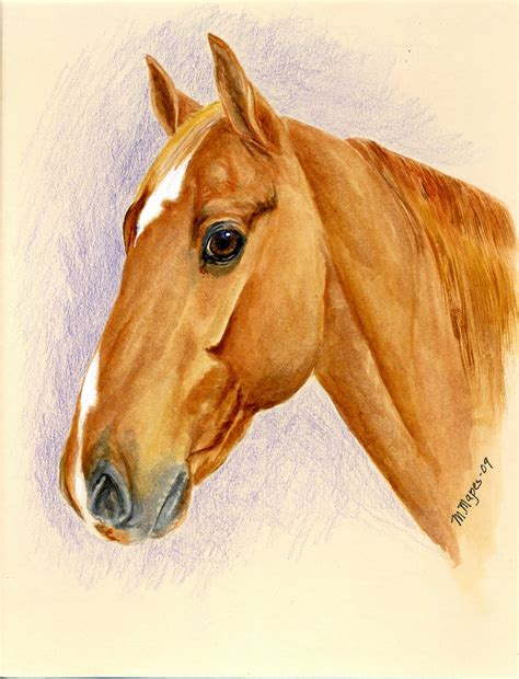 Mary Mapes Art: Pet Portraits Horses Dogs Cats
