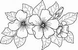 Coloring Pages February Beccysplace Colouring sketch template