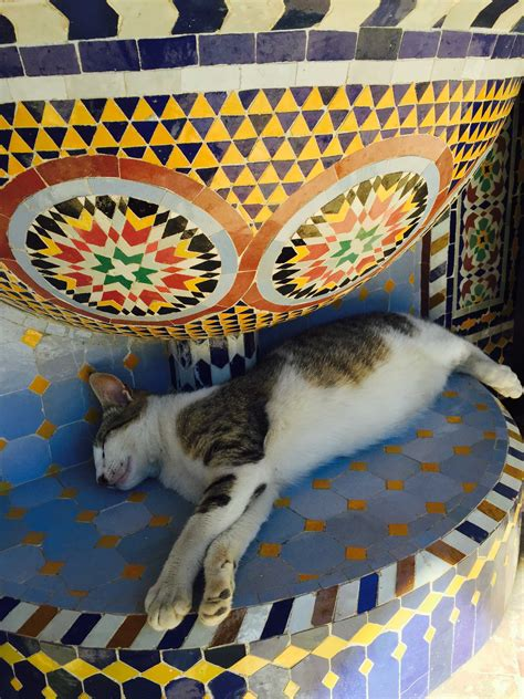 morocco s traditional crafts pottery and zellige tilework morocco s traditional crafts pottery and zellige tilework mint tea tours