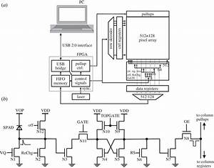 single photon imaging in complementary metal oxide With figure 91 basic block diagram of a frequency counter