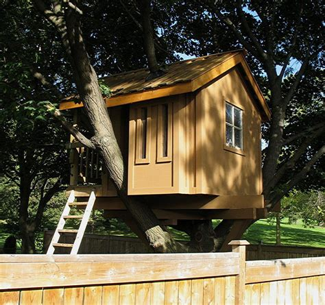family builds amazing treehouse      huffpost