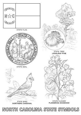 North Carolina State Symbols Coloring page | nc history | Flag coloring pages, Coloring pages